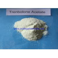 Cheap Versatile Trenbolone Acetate Trenbolone Powder 10161 34 9 For Bodybuilding Supplements wholesale
