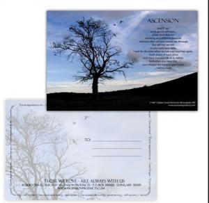 Cheap PLASTIC LENTICULAR lenticular postcard cost pp pet 3d printing lenticular postcard 3d postcards for sale wholesale