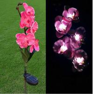 China Pink Phalaenopsis Stainless Steel Solar Garden Lights, Flower Solar Powered Outdoor Lights on sale