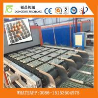 Fully Automatic paper egg tray forming machinery-Whatsapp:0086-15153504975