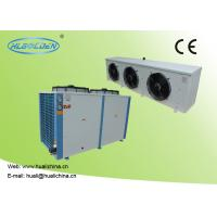 Cheap 9~50kw Low Temperature Chiller With R404a For Cooling Meat Storage Room With High Efficient Compressor wholesale