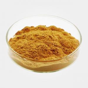 Cheap CAS 3604-87-3 Ecdyson 90% 1kg/bag Light yellow powder Specifications Steroids lisa@szmallbio.com wholesale