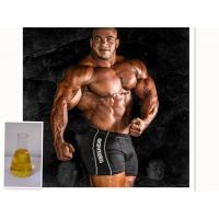 Cheap Oil Yellow Liquid Injectable Anabolic Steroids Supertest 450 For Muscle Bodybuilding wholesale