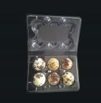 Cheap Disposable plastic quail egg tray 6 holes quail egg tray plastic egg tray for quail eggs 6 slots wholesale