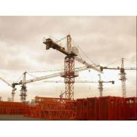 Cheap 2012 Hot Selling QTZ315 Tower Crane wholesale