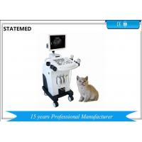Cheap Gray Scale Trolley Type Ultrasound Scanner For Dog Pregnancy Examination wholesale