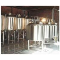 SUS 304 Nano Brewery Equipment Craft Ale Brewing Equipment 220V CE Certification