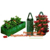 Cheap OEM Planter Biodegradable Garden Bags , Hanging Growing Strawberry Bags wholesale