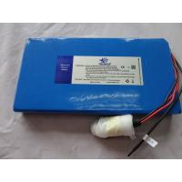 24V 10ah Lithium-Ion Polymer Battery for electric moped