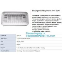 Cheap Blister Packaging Tray Rectangular Plastic Food Tray Corn Starch PLA Cement Tray wholesale