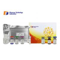 Cheap Customized Bovine Prolactin ELISA Test Kit / PRL Sandwich Immunoassay Kit 96 Wells Plate wholesale