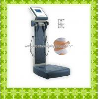 Body fat analyzer (A012)