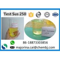 Buy cheap Testosterone Sustanon 250 / Test Sus 250 Mix Test Steroids Yellow Oils from wholesalers