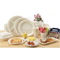 Cheap 100% Biodegradable Compostable Sugarcane Pulp Packaging Disposable Paper Plate wholesale