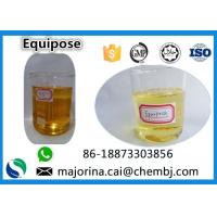 Cheap Equipose /Boldenone Undecylenate/EQ  Injectable SteroidsCAS 13103-34-9 wholesale