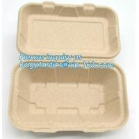 Cheap Compostable Dinnerware Corn Starch Biodegradable Meat / Cake / Rectangular Tray wholesale