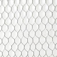 Cheap Chicken Wire Mesh|Florist Hex Netting 13~50mm Mesh Size for Building or Poultry wholesale