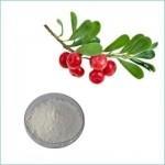 Cheap Skin Care Freckle Cream Alpha Arbutin CAS 84380-01-8 wholesale