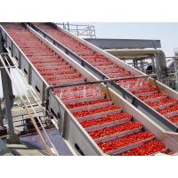 China PLC Control Food Processing Machine Tomato Processing Line Water Cycling on sale