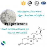 Cheap Progesterone Female Sex Powder Increasing Hormones 98% Purity CAS57-83-0 wholesale