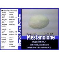 Cheap Health And Fitness Steroid Raw Powder Mestanolone / Methylandrostanolone CAS No 521-11-9 wholesale