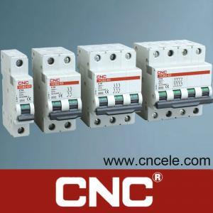 Cheap Mini Circuit Breaker (YCB2-63(C60N)) wholesale