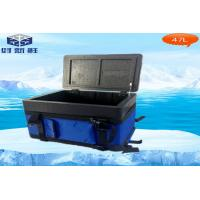 Cheap Portable Vaccine EPP Cooler Box Capacity 8L For Transport Rotational Moulding Cooler Box wholesale