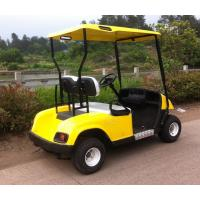 Cheap 2 seaters gas powered golf cart,cheap golf cart for sale wholesale