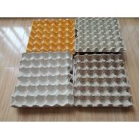 Cheap Environment Friendly Paper Egg Tray Production Line Computer Controlled With High Efficiency wholesale