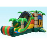 Cheap Gaint Inflatable Bouncer Combo , Tropical Inflatable Water Castle wholesale