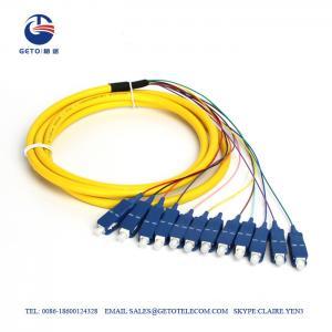 Cheap High Precision SM SC 12 Core 0.3dB Fiber Optic Pigtail Single Mode wholesale
