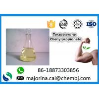 Cheap Testosterone Phenylpropionate Testosterone Anabolic Steroid Maintaining Lean Muscle Mass wholesale