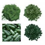 Cheap Organic Spirulina,Chlorella,Barley grass powder wholesale