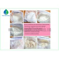 CAS 58-20-8 Pharmaceutical Testosterone Cypionate Bodybuilding Supplements Steroids