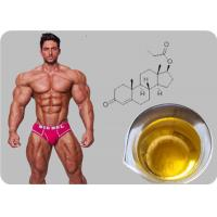 Cheap Testosterone Propionate Oil - based Injectable Testosterone Steroid Powder wholesale