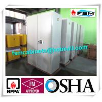 Metal Fireproof Storage Cabinets With 2 Door For Large