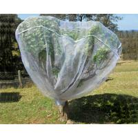 Cheap Fruit Tree Net, 20-50mesh,0.5-6.0m,green and white,protect the trees wholesale