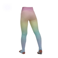 Cheap Anti-UV Yoga Outfit Athletic Set Gym Clothes For Women wholesale
