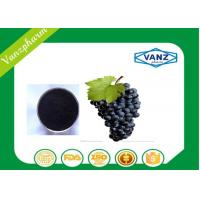 Cheap Pure Herbal Extracts HPLC  95% OPC grape seed extract for Antioxidant wholesale