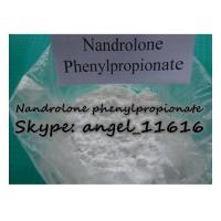Cheap CAS 62-90-8 DECA Hormone Steroid Nandrolone phenylpropionate For Cutting Cycle NPP wholesale