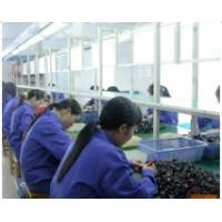 Sino Cable Gland Factory