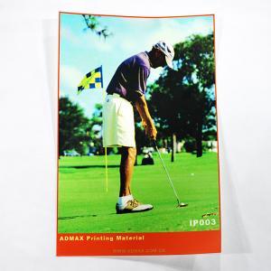 China Digital Vinyl Large Banner PrintingWith Cartoon Sticker Printing on sale