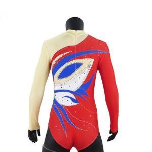 Cheap Stretchable Long Sleeve Gymnastics Training Leotards , Girls Gymnastics Leotards wholesale