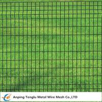 Cheap Euro Fence|Welded Wire Mesh Fencing 50x50mm by PVC Coated Wire wholesale