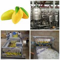 Cheap Mango Processing Line Paste Processing Line Plant in PET glass packing wholesale