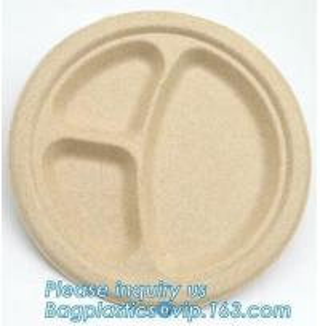 Cheap Food Eco Friendly Dinnerware Fruit Snack Biodegradable Corn Starch PLA Foamed wholesale