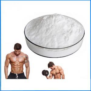 Cheap Injectable Testosterone Cypionate EINECS 200-370-5 For Bodybuilding wholesale