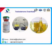 Cheap High Purity Injectable Testosteroneenanthate / Test E Steroids 100mg/Ml 300mg/Ml For Bodybuilding wholesale