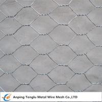 Cheap Hexagonal Wire Netting/Hex Decorative Wire Mesh|Used for  Fencing Gabion wholesale