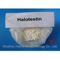Pharmaceutical Strongest Testosterone Steroid Fluoxymesteron Halotestin 99.7% Purity